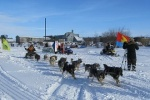 "A sled dog race ""Malkalu-2013"" has started in Kamchatka"