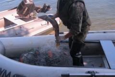 Трое граждан Республики Узбекистан, действовавших в составе организованной группы, обвиняются в незаконной добыче водных биологических ресурсов на Камчатке
